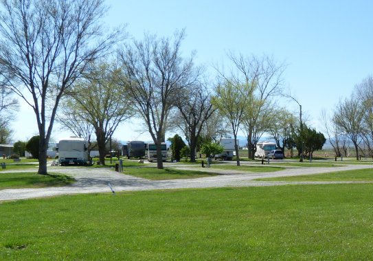 willows-rv-park